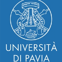 PostDoc at the University of Pavia (Analysis of Evolution Equations)
